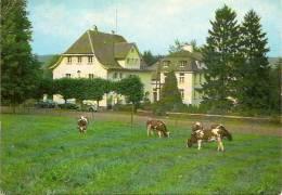 AMBLEVE-AMEL:MISSIONSHAUS St RAPHAEL-missionnaires - Amel