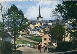 Saint-Vith / Sankt Vith  - Jolie Carte Couleur , Années 60 - Sankt Vith