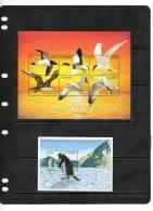 GAMBIA,BIRDS, SEABIRDS, SHEETLET+S/ SHEET,  MNH - Zonder Classificatie