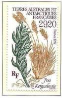 T.A.A.F.1997: Michel-No.367 Poa Kerguelensis ** MNH (cote 14.00 Euro) - Plants