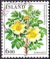 Republik 1984 Blumen (II) 6 Kr.  Mi. 612 - 1944-... Republik