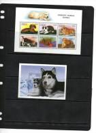 ANTIGUA, 1997, DOGS, PUPPIES,  SHEETLET+ S/SHEET , MNH - Honden