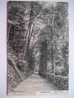 LINKEBEEK - La Drève - L. Lagaert N°833 - Linkebeek