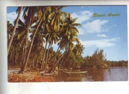 Un Bord De Mer Très Caractéristique  De TAHITI - Tahiti
