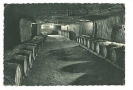 INDRE & LOIRE - Dépt N° 37 = VOUVRAY 1953 = CP  Publicité Des Caves De Monsieur DIARD = OFFRE DEGUSTATION SALON PARIS - Vouvray