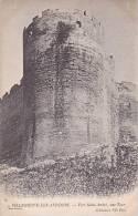 France Avignon Fort Saint Andre une Tour