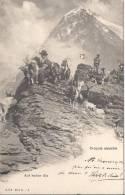 4581 - Croquis Alpestre Les Chèvres Au Sommet - Animaux & Faune