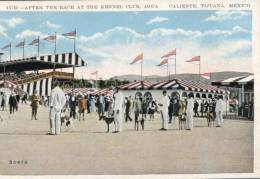 (999) - Kennel Club - Agua - Caliente Tijuana - Mexico - 1936 - Chiens