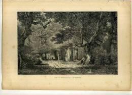 - FORET DE FONTAINEBLEAU . LE GROS FOUTEAU . GRAVURE SUR BOIS  DU XIXe. S.  . - F. Arbres & Arbustes