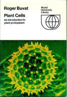 Plant Cells - An Introduction To Plant Protoplasm - Culture