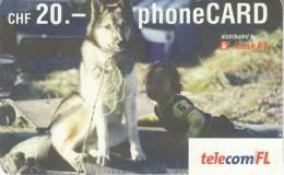 Switzerland & Liechtenstein-telecom FL-phoneCARD - Liechtenstein