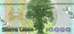 SIERRA LEONE P. 29a 10000 L 2004 UNC - Sierra Leone