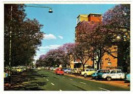 Quiet Carriageway, Pretoria - & Old Cars - South Africa