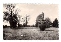 Pontailler Sur Saone: Le Mont Ardoux, Vierge à L' Enfant (12-3415) - France