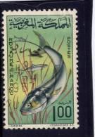 MOROCCO. 1967,  USED # 152, BLUEFISH - Maroc (1956-...)