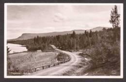 SN76) Jäckvic - Peljekajse - Real Photo Postcard - Sweden