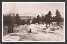 SN77) Vinter í Jäckvic - Skidåkare - Real Photo Postcard - Sweden