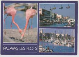 PALAVAS LES FLOTS - MULTIVUES - Palavas Les Flots