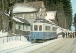 Chemin De Fer, Trains Du Canton Appenzell Et St Gall Skieurs à Rank Photo 1969 BVA 123.6 TB - AI Appenzell Rhodes-Intérieures