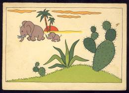 CACTUS      ELEPHANTS        Old Postcard - Elephants