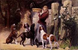 Dog  DACHSHUND         Old Postcard - Dogs