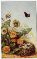 FLEURS  DANDELION AND GOLDFINCH S  NEST  PAPILLON ILLUSTRATION   MAUDE SCRIVENER - Tuck, Raphael