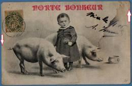 JEUNE GARCON YOUNG BOY  COCHON  PIG  - PORTE BONHEUR GOOD FORTUNE - Cochons