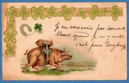 PIG - COCHON - PORTE BONHEUR - GOOD FORTUNE - Argent - Money - Pigs