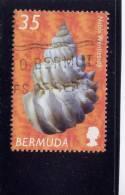 Bermuda, 2002-3, USED # 842,  SHELLS: NOBLE WENTLETRAP - Bermudes