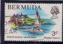 Bermuda, 1978-79,  USED  # 363,   WHITE-TAILED TROPIC BIRDS - Bermudes