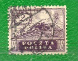 23 POLONIA 1919-Gobierno Prov.- Sellos Emitidos Por Polonia Del Sur, Ocup. Por El Ejercito Austria Y Hungria - ....-1919 Übergangsregierung