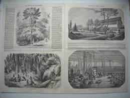 GRAVURE 1856. LE CAOUTCHOUC ET LA GUTTA-PERCHA. 4 GRAVURES DONT USINE ELEVEE AUX THERNES PAR M. RATTIER. - Vieux Papiers