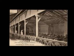 19 - ORGNAC-SUR-VEZERE - Préventorium Du Glandier - La Cure En Plein Air - France