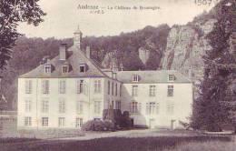 ANDENNE-LIVES S/MEUSE = Le Château De Brumagne  (ss Edit.) 1907 - Andenne