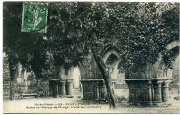 87 SAINT-LEONARD ++ Ruines De L'Abbaye De L'Artige - L'intérieur Du Cloître ++ - Saint Leonard De Noblat