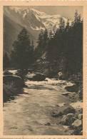 ARGENTIERE----L'ARVE ET LE MONT-BLANC - Chamonix-Mont-Blanc