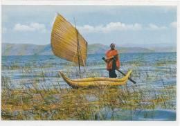 LAGO TITICACA (pêcheur ) - Bolivie