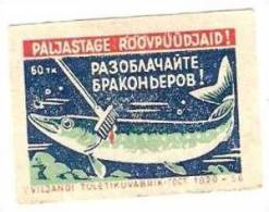 Fish 1956 Estonia Viljandi Machfactory 1  Matchbox Label Uncover Illegal Fisherman - Cajas De Cerillas - Etiquetas