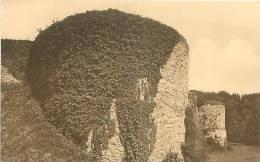 Château De GAESBEEK-lez-BRUXELLES - Tours Démantelées Du Château Féodal (Nels, Monopole Château, 4) - Lennik
