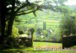 Pays De Galles        Widecombe In The Moor  . - Pays De Galles