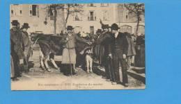 Nos Campagnes - Conclusion Du Marché (état) - Agriculture