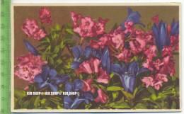 """""""Blumen, Photochromie-Offset, Serie 693 Nr.2011"""" Um 1950/1960 Ungebrauchte Karte - Botanik"""