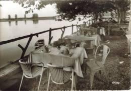 CPSM ALLEREY (Saone Et Loire) - Hotel Beau Rivage : La Terrasse - France