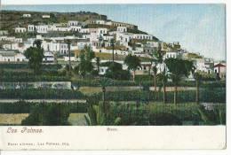 CPA ESPAGNE  CANARIAS LAS PALMAS  RISCO JOLIE VUE - La Palma