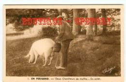 TRUFFE - Chercheur De Truffes Avec Son Cochon - Champignon - Dos Scané - Agricoltura