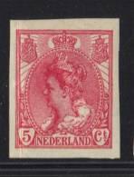 PAYS BAS Y&T N° 51a MNH ** . (MNT114) - 1891-1948 (Wilhelmine)
