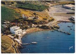 Carte Postale Moderne Non écrite Pyrénées Orientales 66 - Port Vendres, La Plage Et Le Camping - Port Vendres
