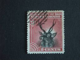 Noord Borneo Du Nord North Borneo 1894 Cerf Malais Hert Yv 53 O - Wild