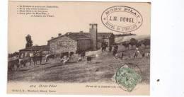 42 MONT PILAT FERME DE LA JASSERIE - Mont Pilat