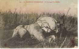 Cochinchine Chasse Dépecage D´un éléphant - Vietnam